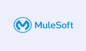 Mulesoft Deployment using Maven and Jenkins Plugin