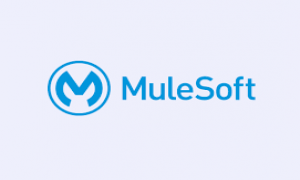What are the features of Mulesoft's Anypoint Platform
